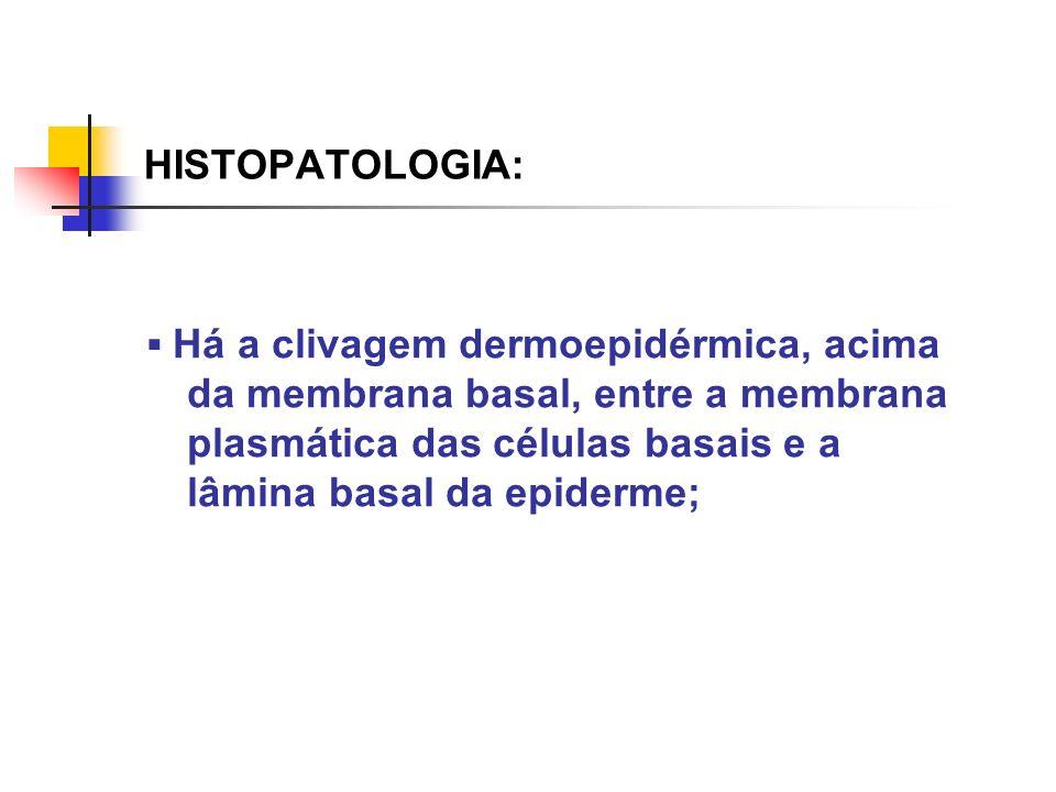 HISTOPATOLOGIA: