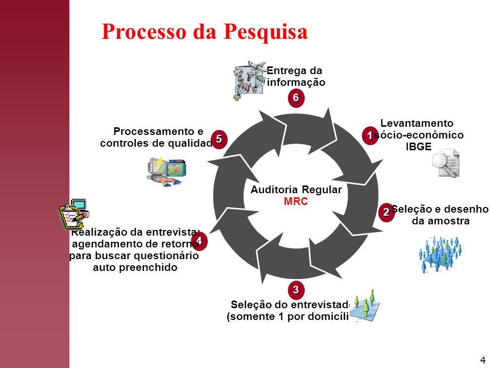 Processo da Pesquisa Entrega da informação 6 1 Levantamento