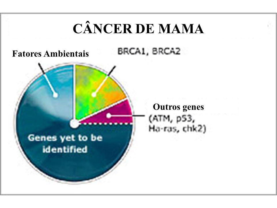 CÂNCER DE MAMA Fatores Ambientais Outros genes