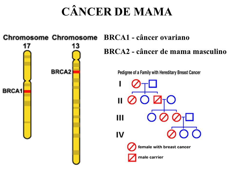 CÂNCER DE MAMA BRCA1 - câncer ovariano