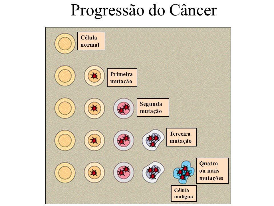 Progressão do Câncer Célula normal Primeira mutação Segunda mutação