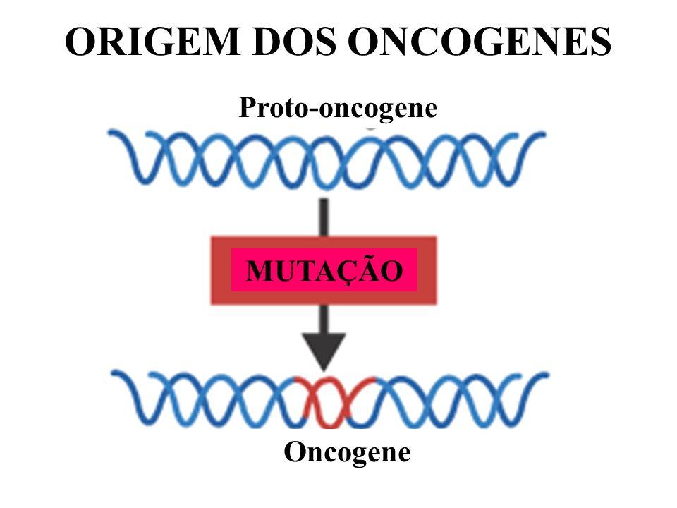 ORIGEM DOS ONCOGENES Proto-oncogene MUTAÇÃO Oncogene