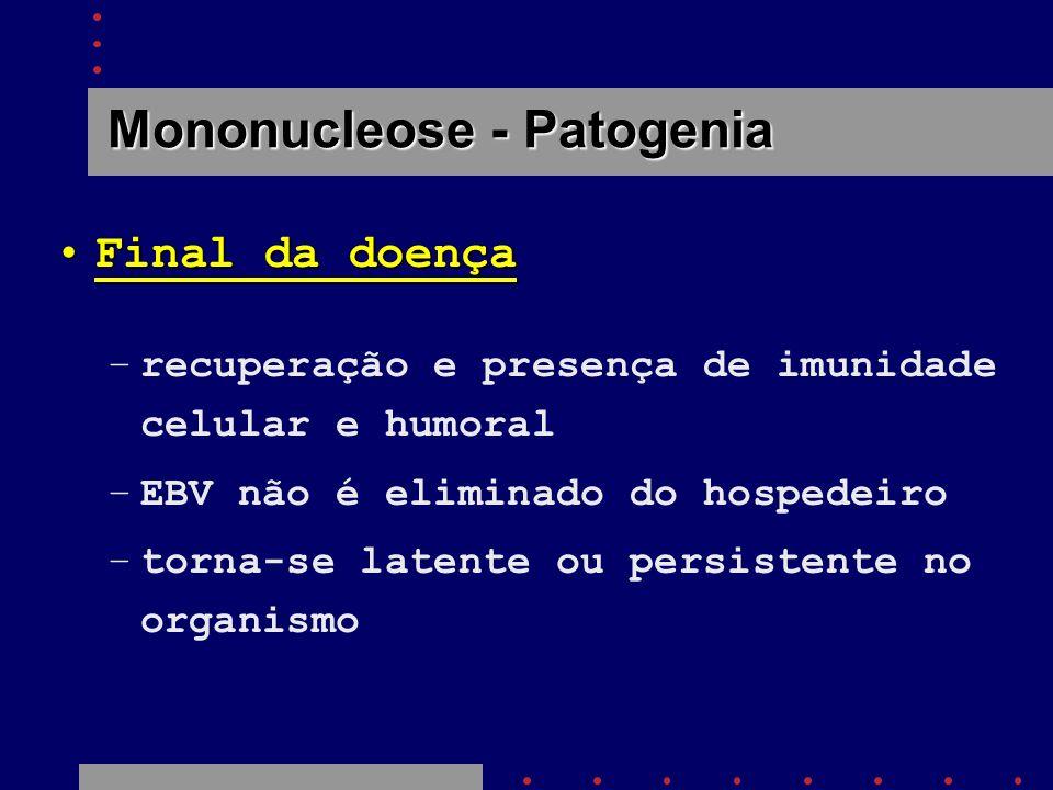Mononucleose - Patogenia