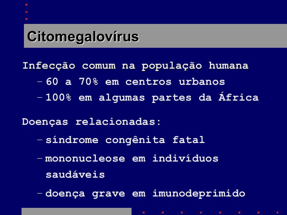 Citomegalovírus Infecção comum na população humana