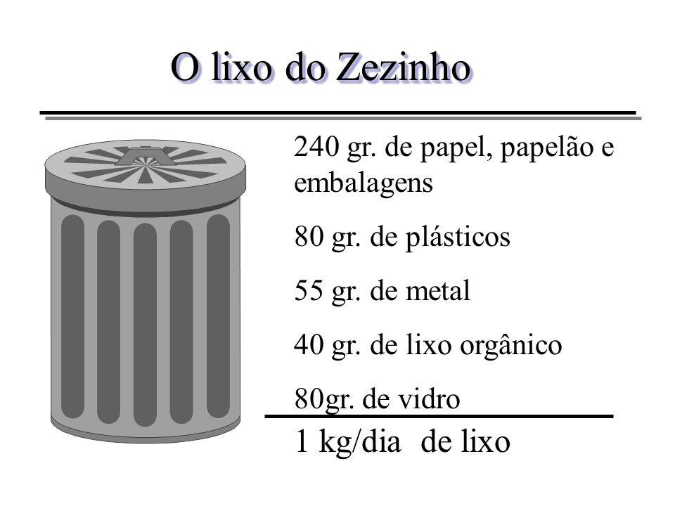 O lixo do Zezinho 1 kg/dia de lixo