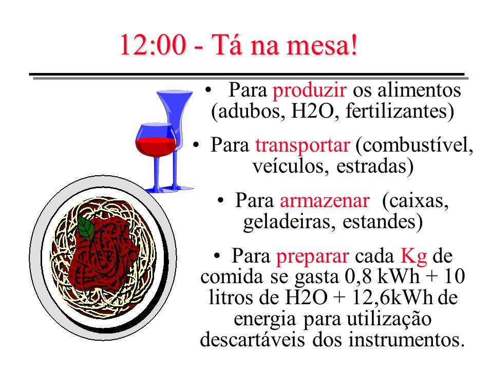 12:00 - Tá na mesa!Para produzir os alimentos (adubos, H2O, fertilizantes) Para transportar (combustível, veículos, estradas)