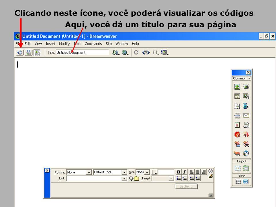 Clicando neste ícone, você poderá visualizar os códigos
