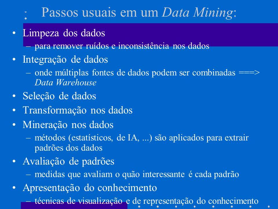 Passos usuais em um Data Mining: