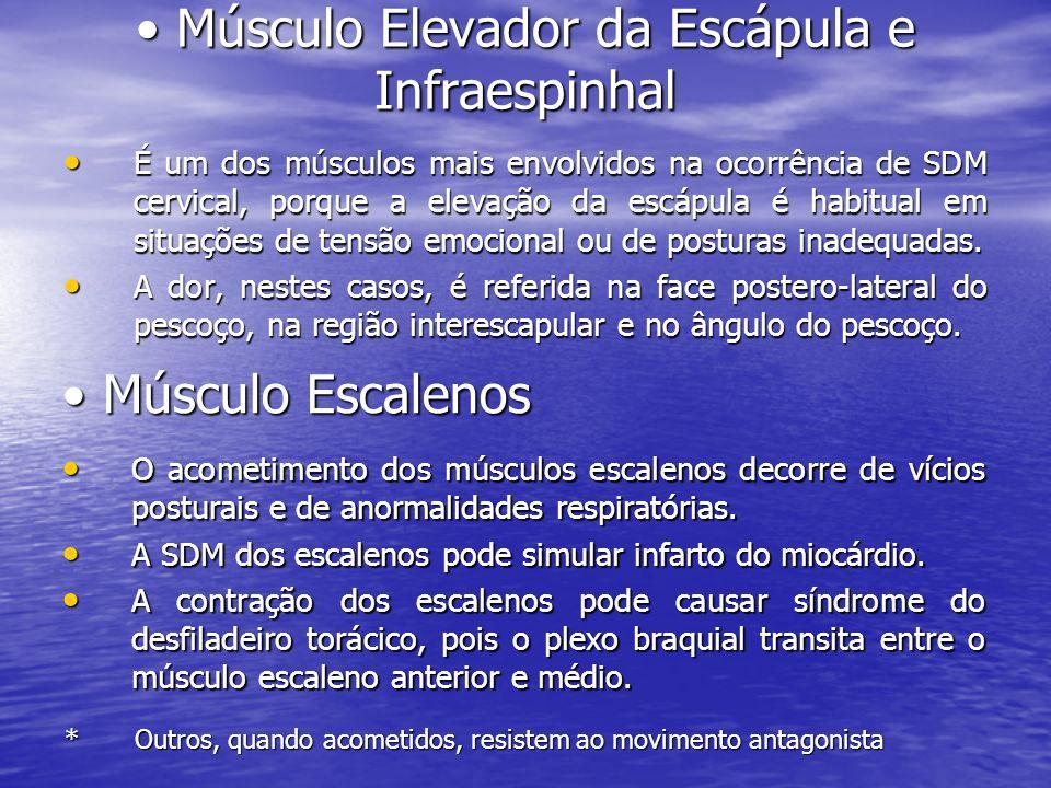 Músculo Elevador da Escápula e Infraespinhal