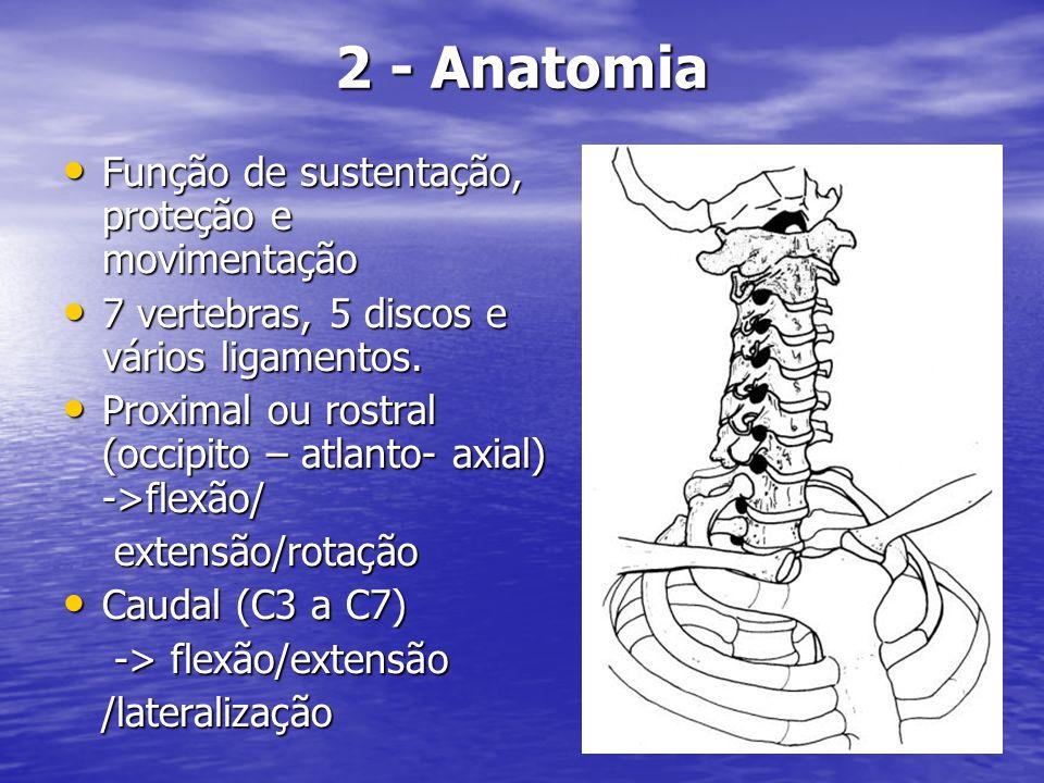 2 - Anatomia Função de sustentação, proteção e movimentação