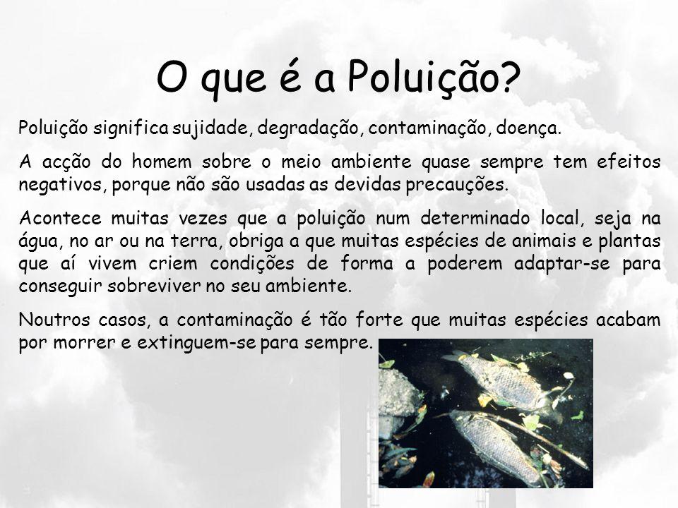 O que é a Poluição Poluição significa sujidade, degradação, contaminação, doença.