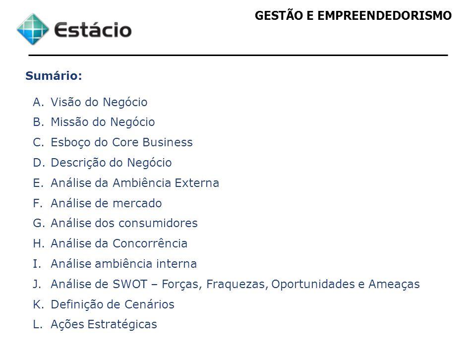 Sumário: Visão do Negócio. Missão do Negócio. Esboço do Core Business. Descrição do Negócio. Análise da Ambiência Externa.