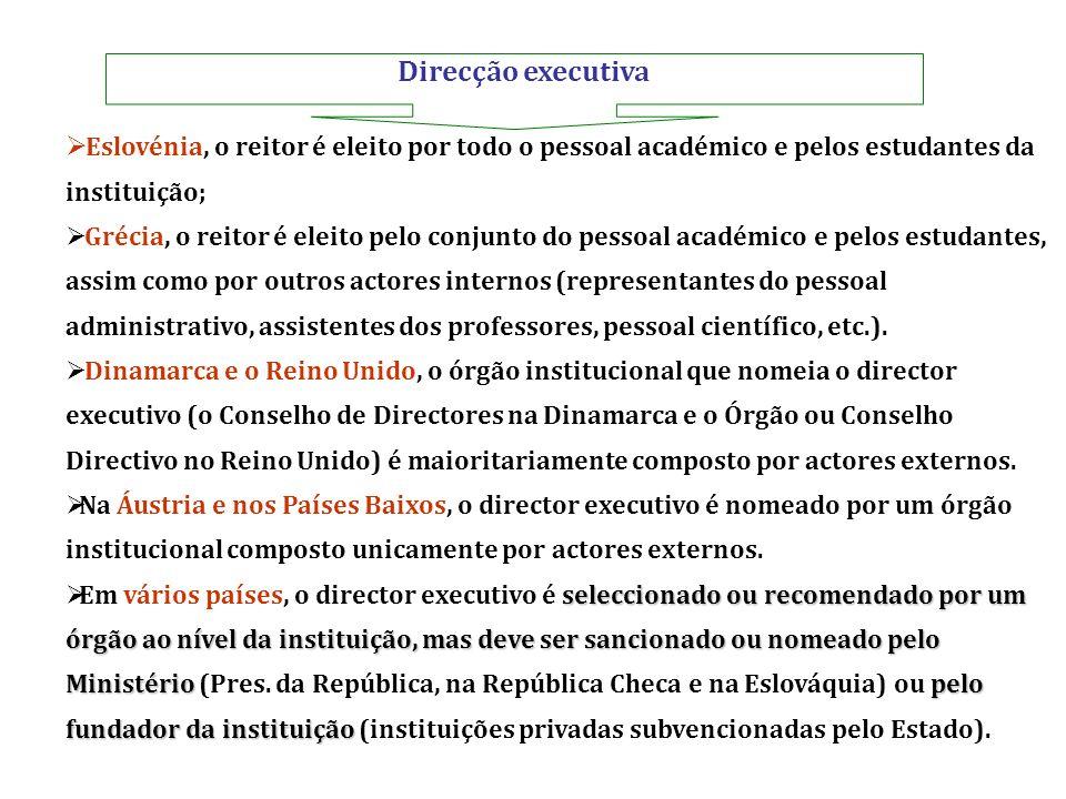 Direcção executiva Eslovénia, o reitor é eleito por todo o pessoal académico e pelos estudantes da instituição;