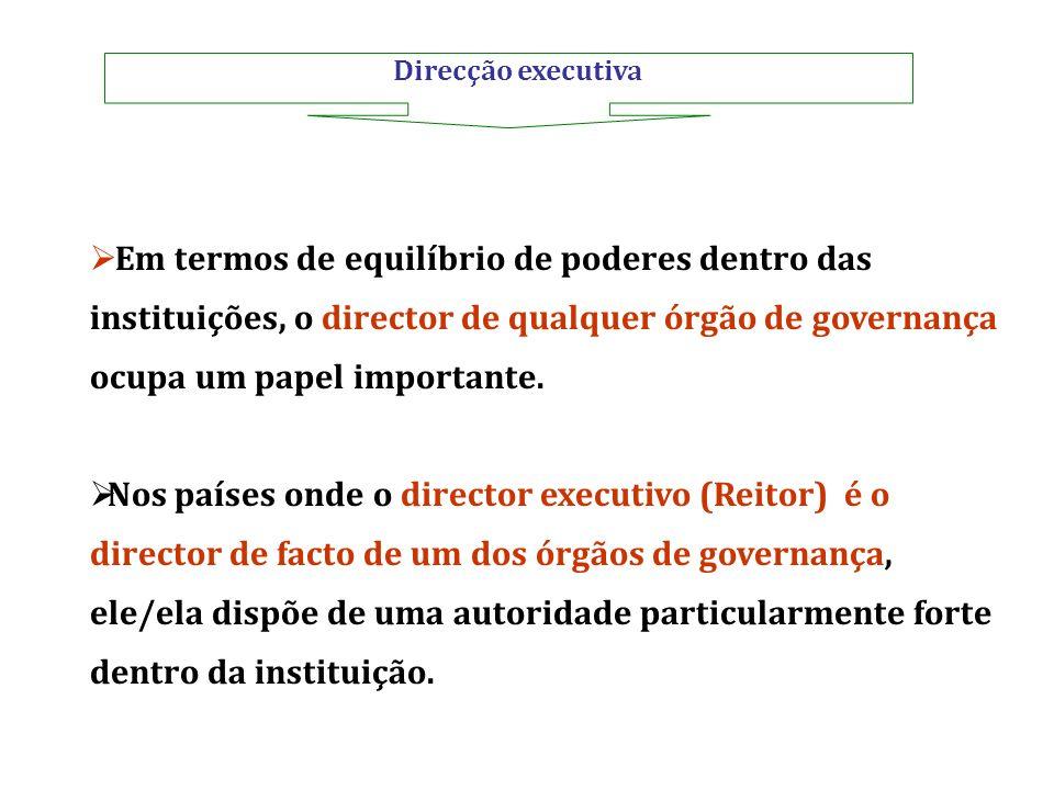 Direcção executiva Em termos de equilíbrio de poderes dentro das instituições, o director de qualquer órgão de governança ocupa um papel importante.