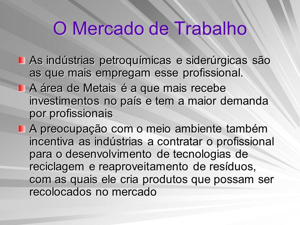 O Mercado de Trabalho As indústrias petroquímicas e siderúrgicas são as que mais empregam esse profissional.