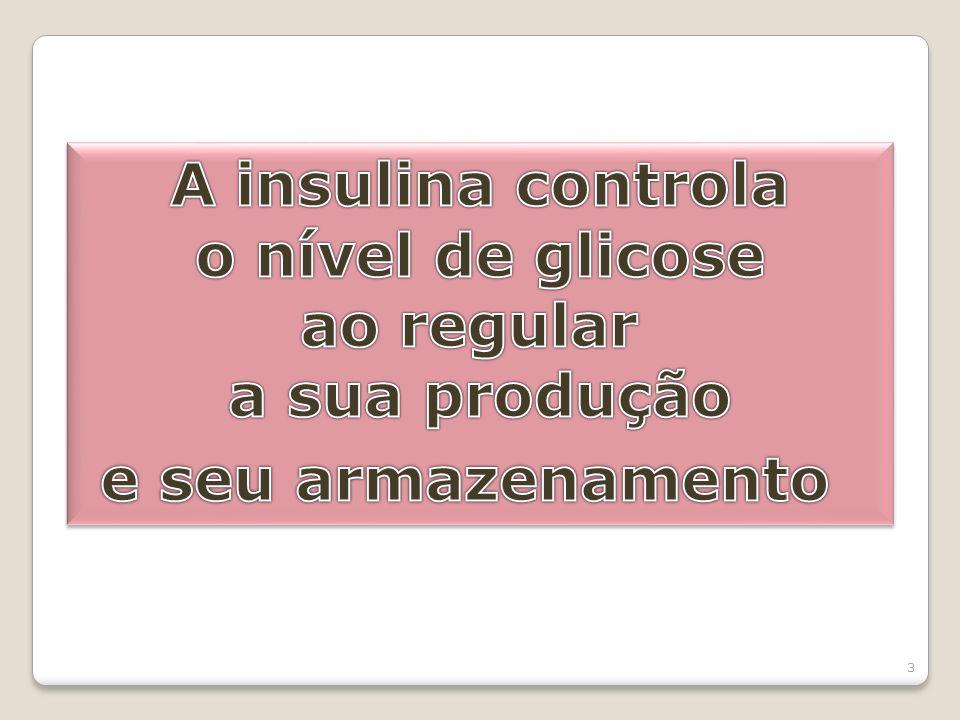 A insulina controla o nível de glicose ao regular a sua produção e seu armazenamento