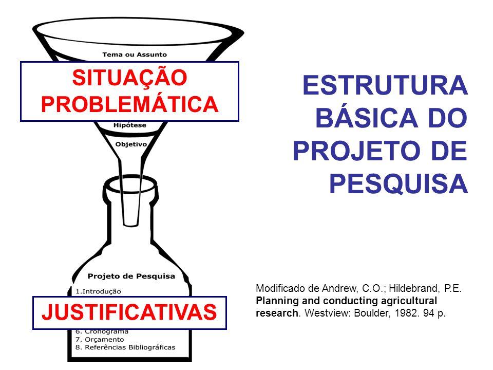 ESTRUTURA BÁSICA DO PROJETO DE PESQUISA