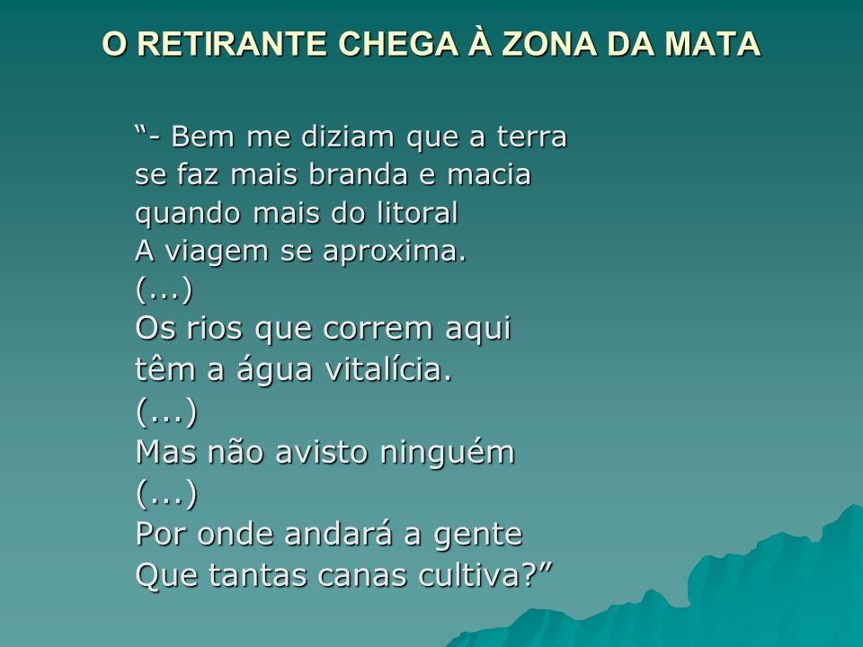 O RETIRANTE CHEGA À ZONA DA MATA