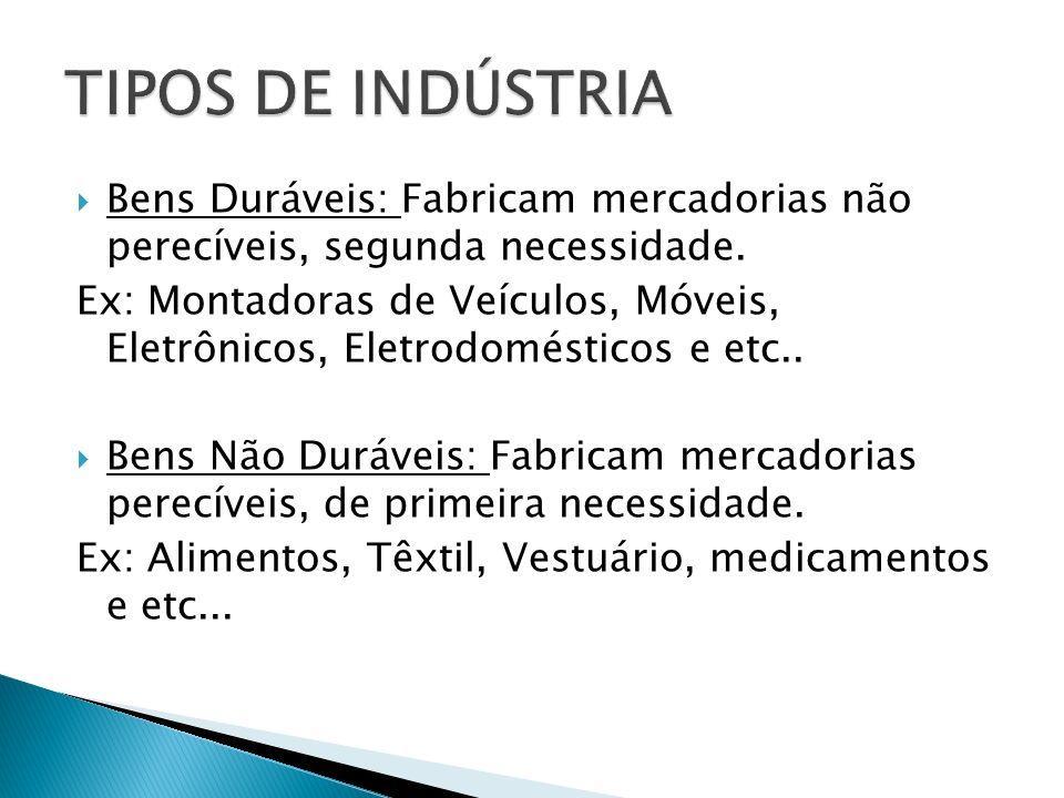 TIPOS DE INDÚSTRIA Bens Duráveis: Fabricam mercadorias não perecíveis, segunda necessidade.