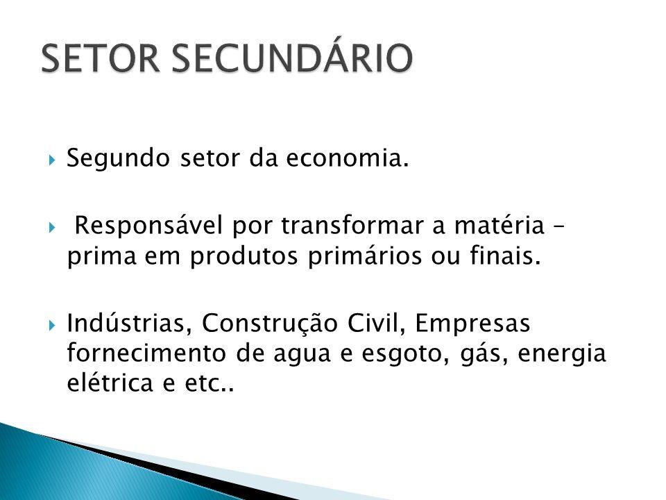 SETOR SECUNDÁRIO Segundo setor da economia.