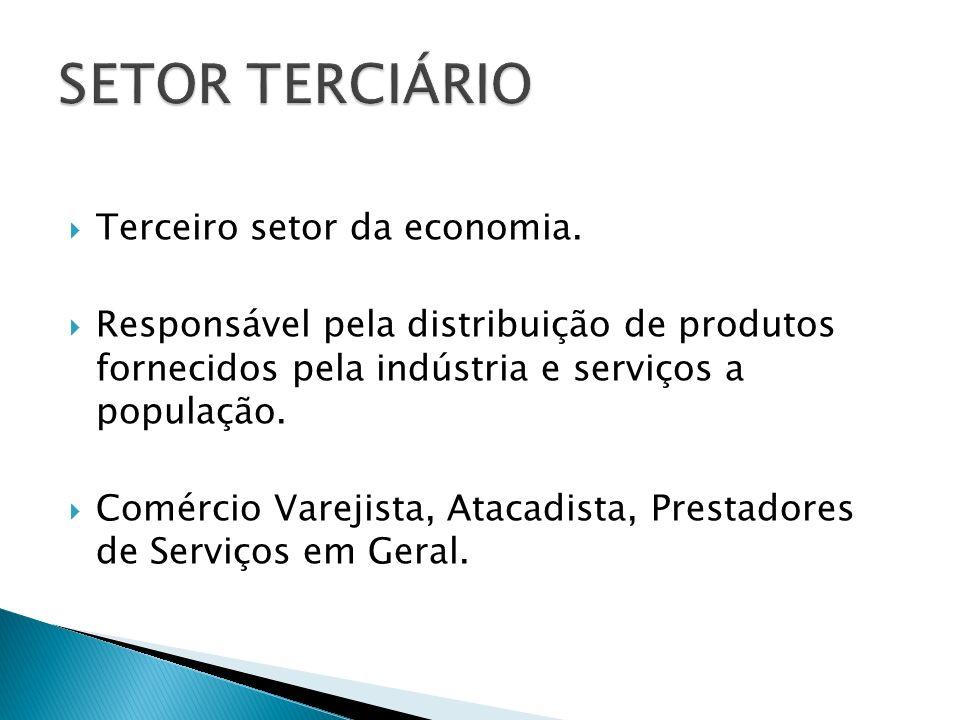 SETOR TERCIÁRIO Terceiro setor da economia.