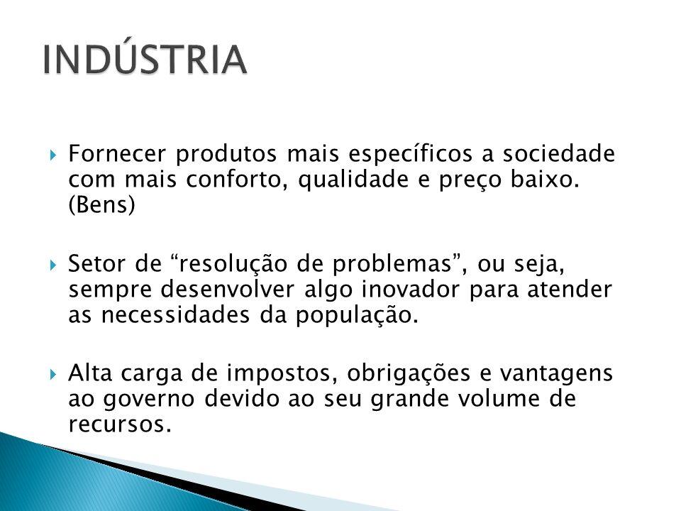 INDÚSTRIA Fornecer produtos mais específicos a sociedade com mais conforto, qualidade e preço baixo. (Bens)