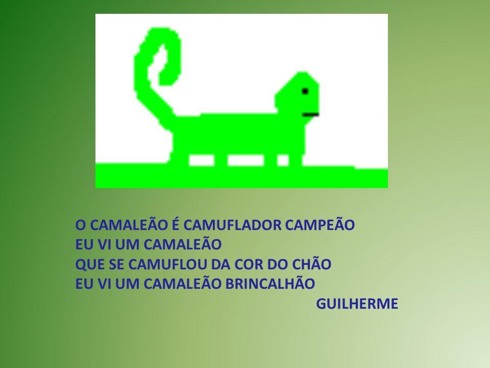 O CAMALEÃO É CAMUFLADOR CAMPEÃO