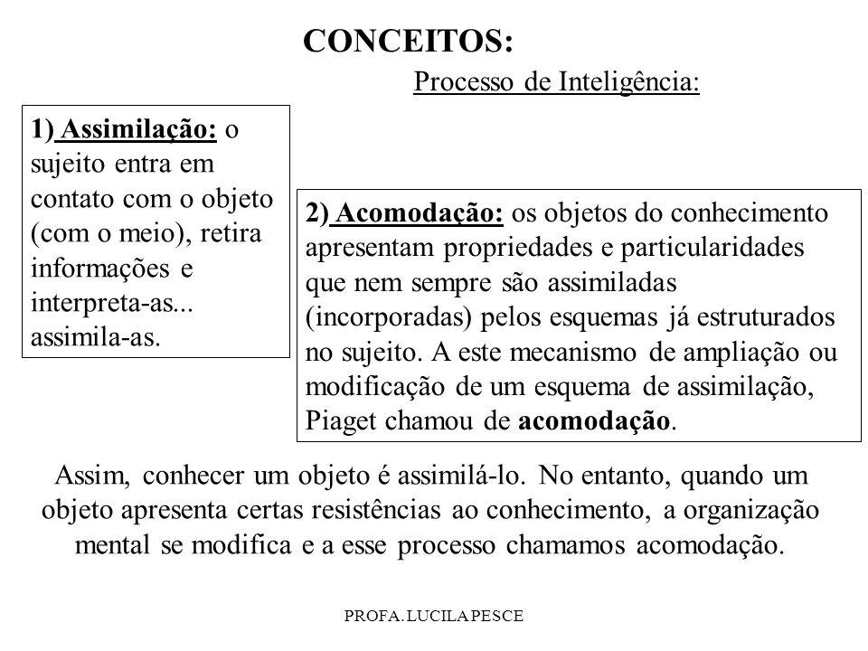 CONCEITOS: Processo de Inteligência: