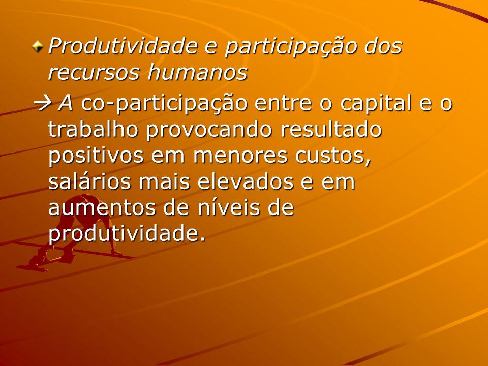 Produtividade e participação dos recursos humanos