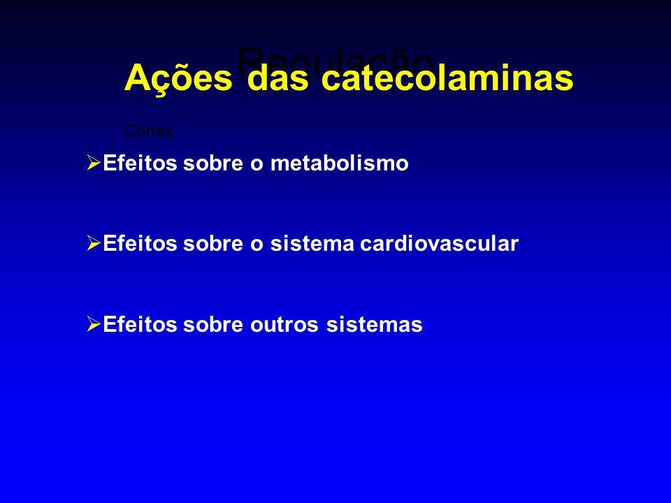 Ações das catecolaminas