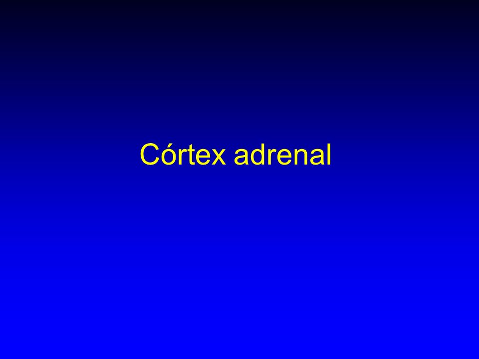 Córtex adrenal