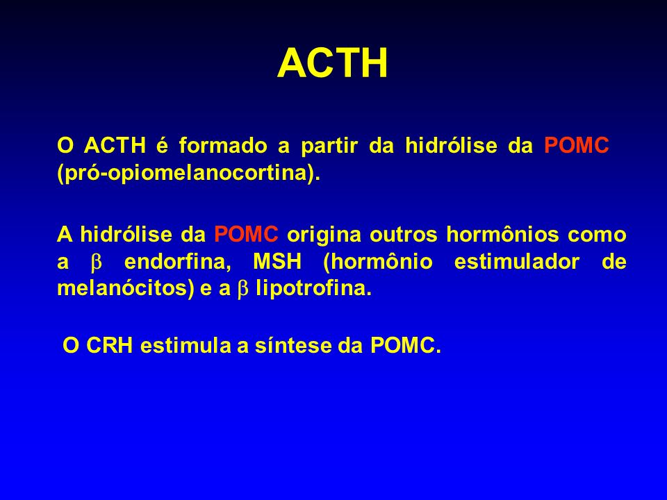 ACTH O ACTH é formado a partir da hidrólise da POMC (pró-opiomelanocortina).