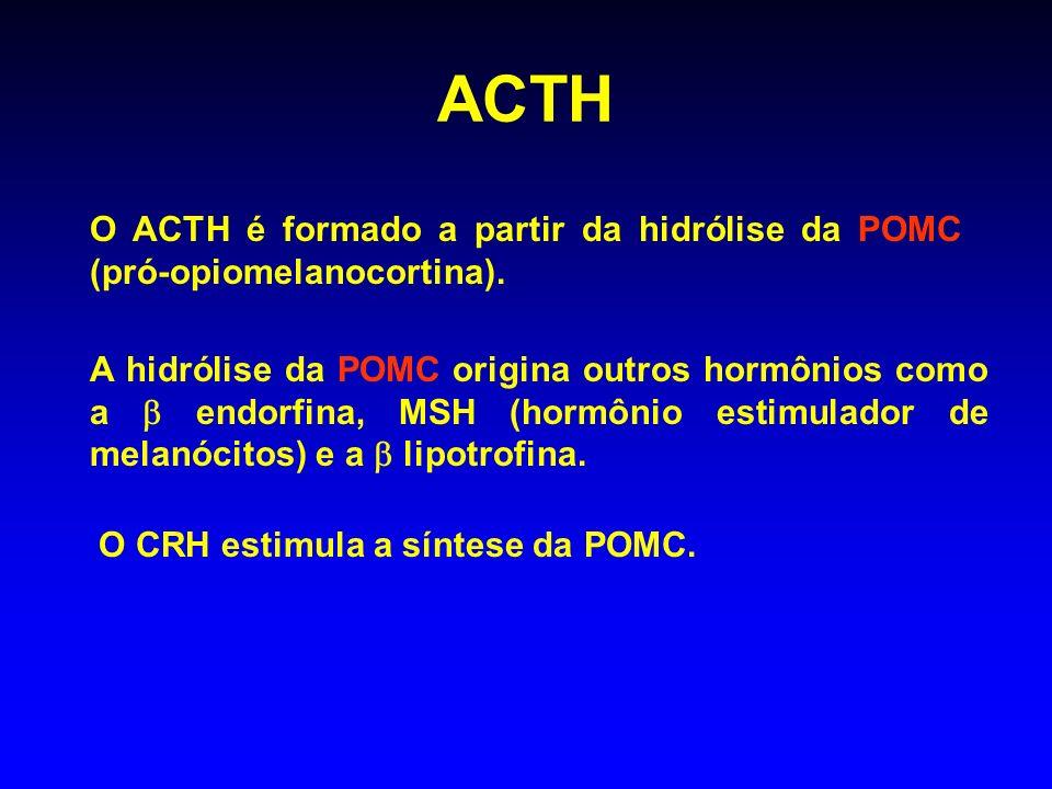 ACTHO ACTH é formado a partir da hidrólise da POMC (pró-opiomelanocortina).