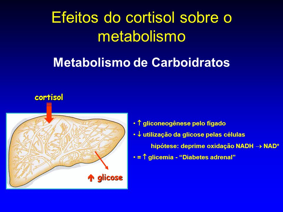 Efeitos do cortisol sobre o metabolismo
