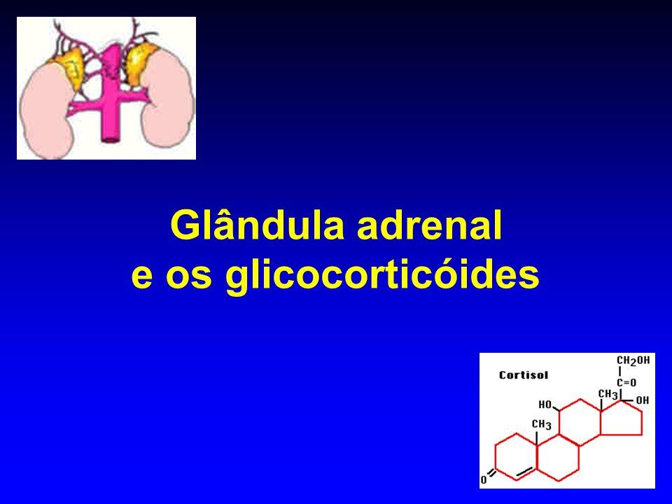 Glândula adrenal e os glicocorticóides