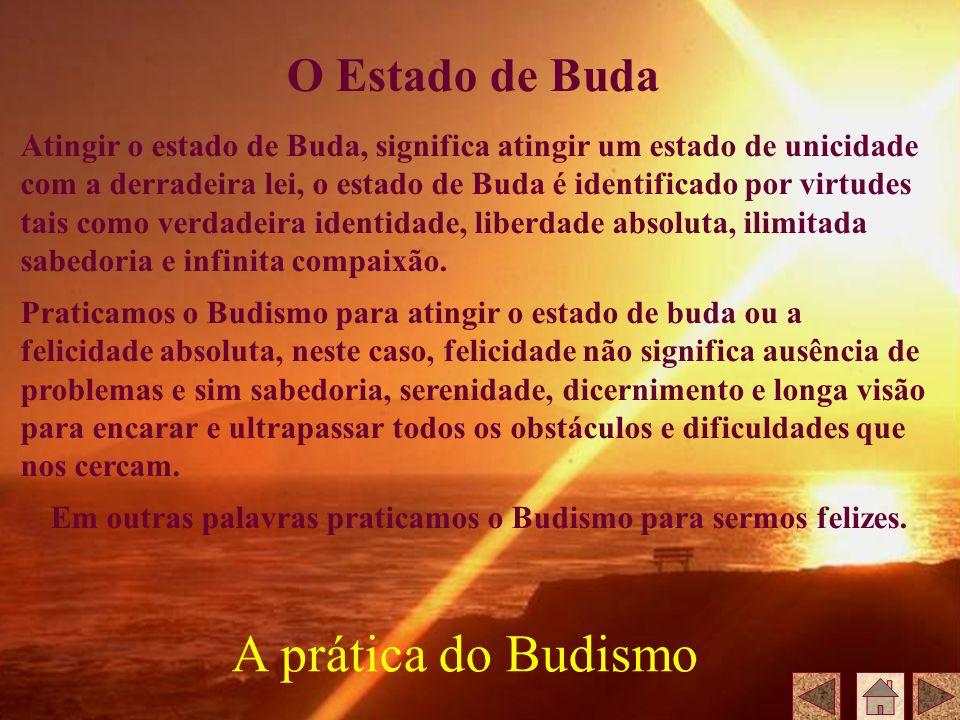 Em outras palavras praticamos o Budismo para sermos felizes.