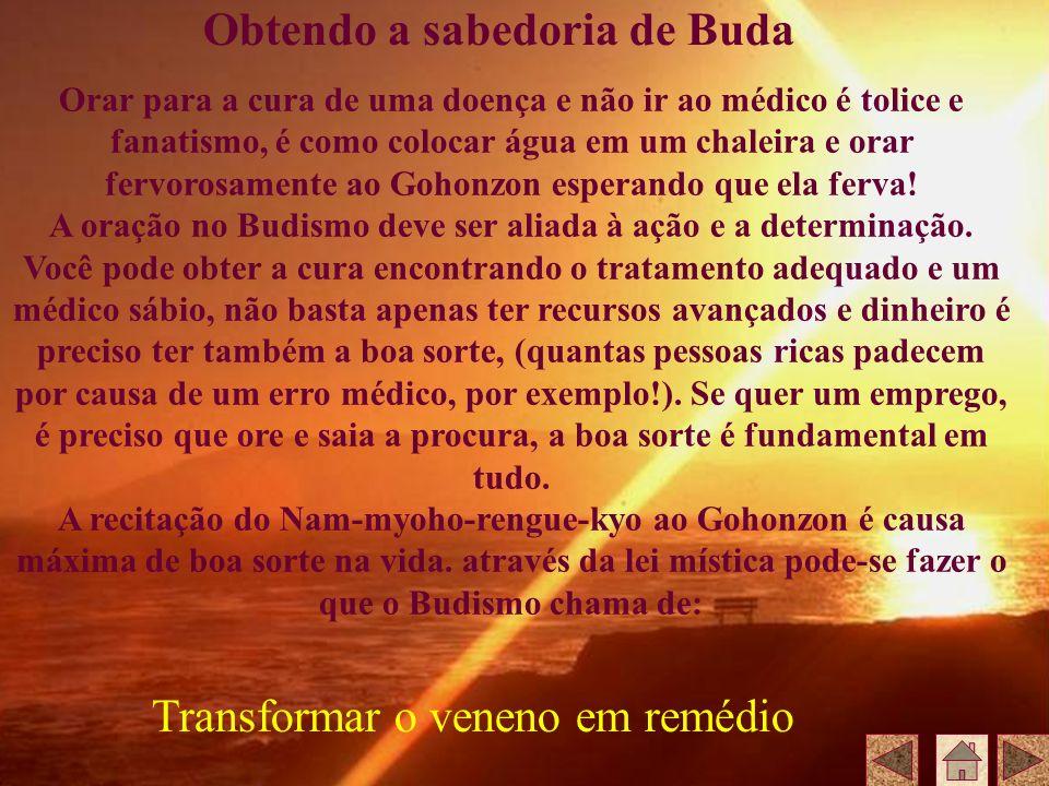 Obtendo a sabedoria de Buda