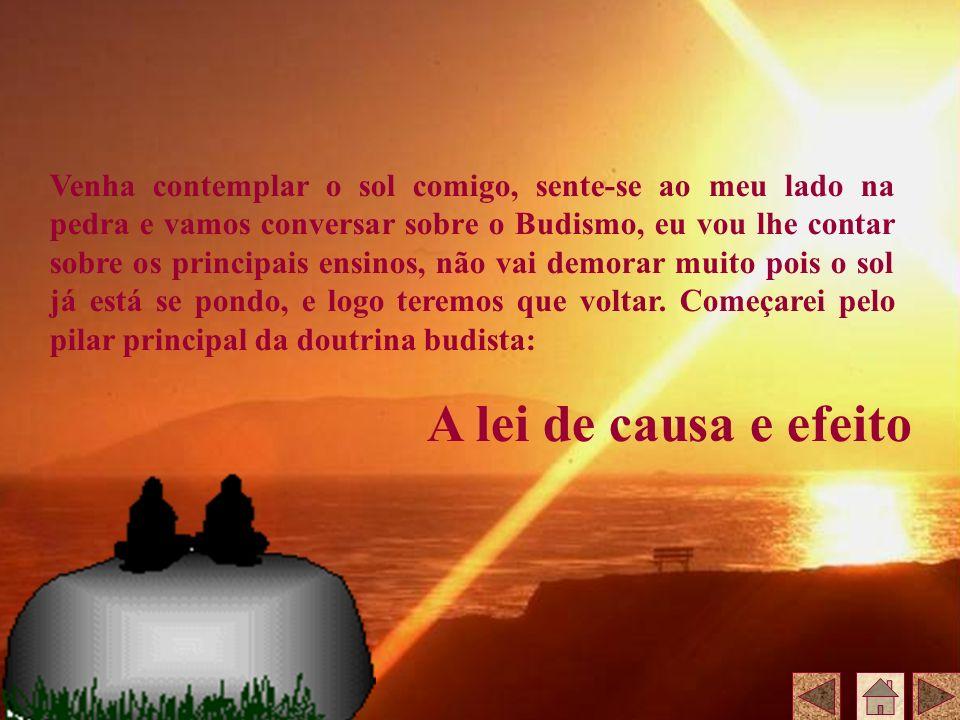 Venha contemplar o sol comigo, sente-se ao meu lado na pedra e vamos conversar sobre o Budismo, eu vou lhe contar sobre os principais ensinos, não vai demorar muito pois o sol já está se pondo, e logo teremos que voltar. Começarei pelo pilar principal da doutrina budista: