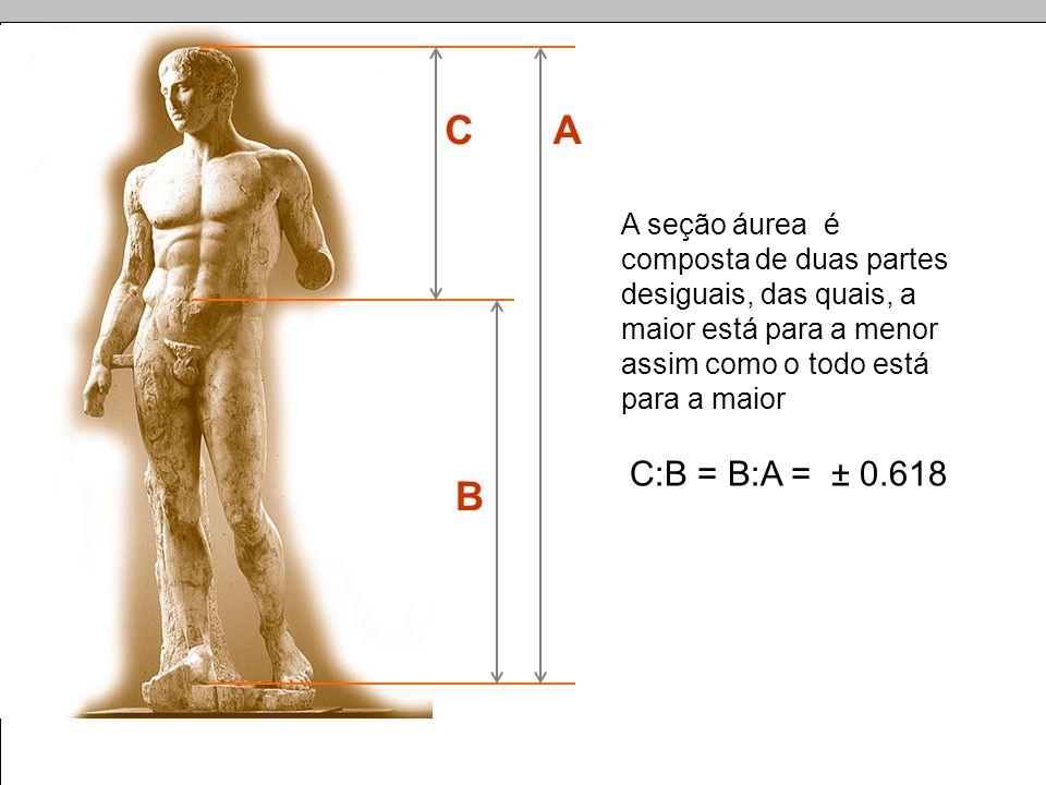 C A. A seção áurea é composta de duas partes desiguais, das quais, a maior está para a menor assim como o todo está para a maior.