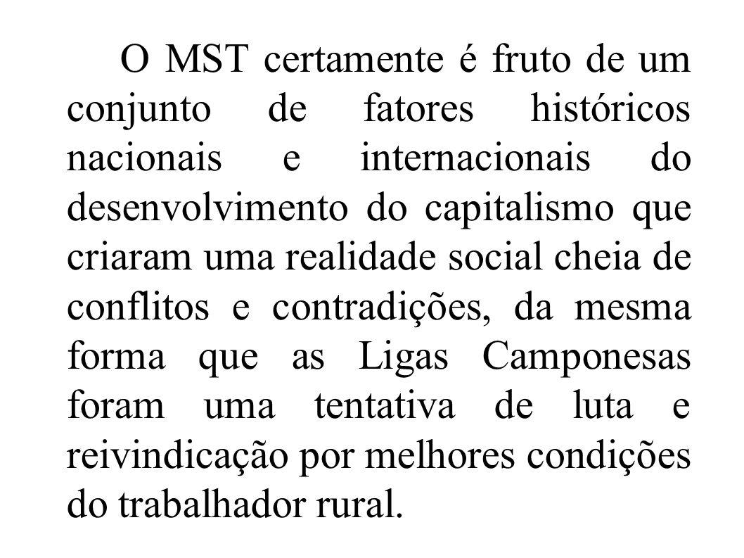O MST certamente é fruto de um conjunto de fatores históricos nacionais e internacionais do desenvolvimento do capitalismo que criaram uma realidade social cheia de conflitos e contradições, da mesma forma que as Ligas Camponesas foram uma tentativa de luta e reivindicação por melhores condições do trabalhador rural.