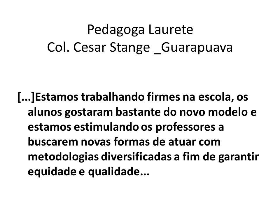 Pedagoga Laurete Col. Cesar Stange _Guarapuava