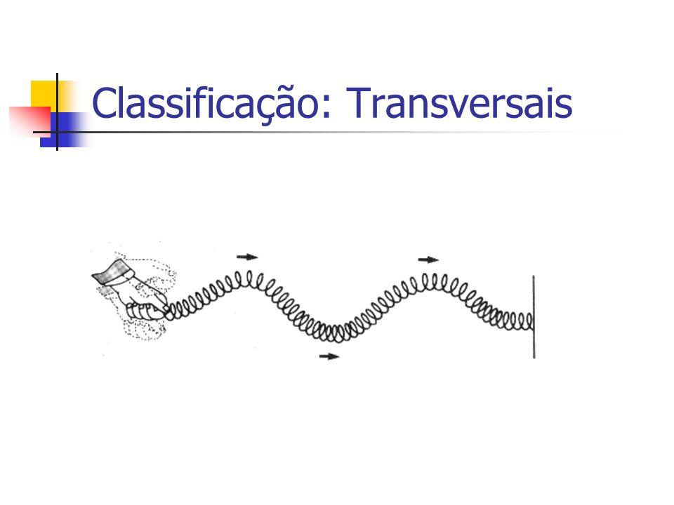 Classificação: Transversais