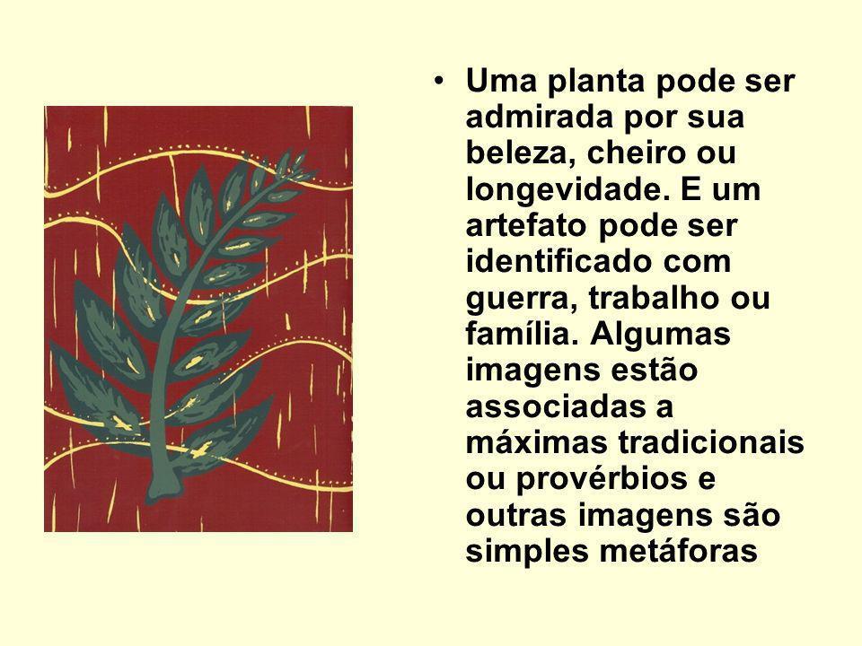 Uma planta pode ser admirada por sua beleza, cheiro ou longevidade