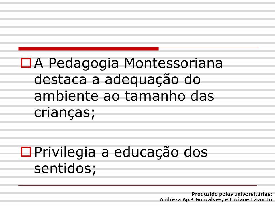 Privilegia a educação dos sentidos;