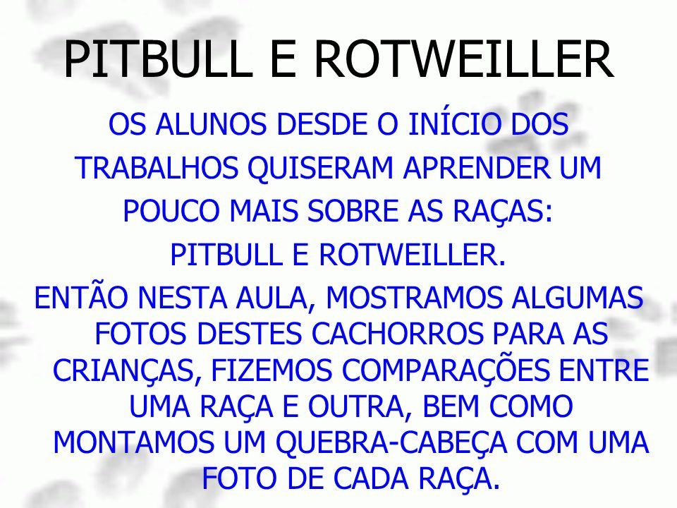 PITBULL E ROTWEILLER OS ALUNOS DESDE O INÍCIO DOS