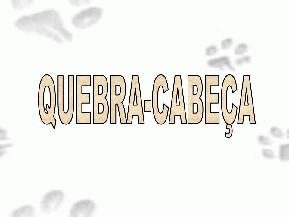 QUEBRA-CABEÇA