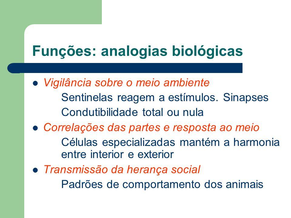 Funções: analogias biológicas