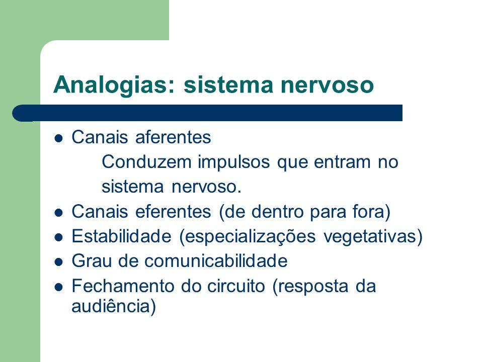 Analogias: sistema nervoso