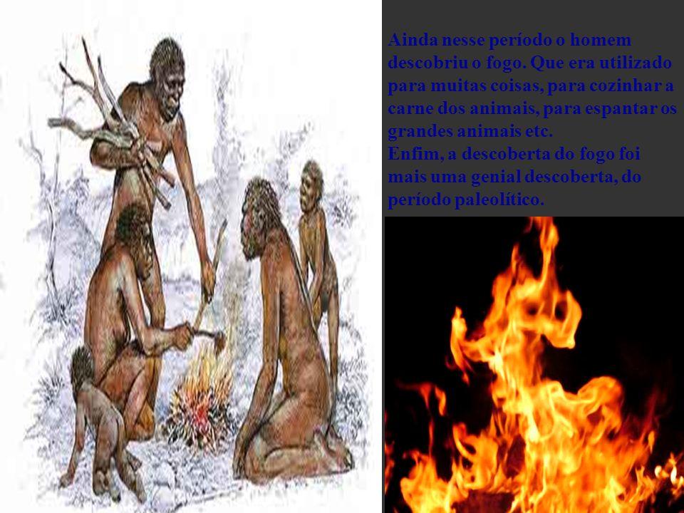 Ainda nesse período o homem descobriu o fogo