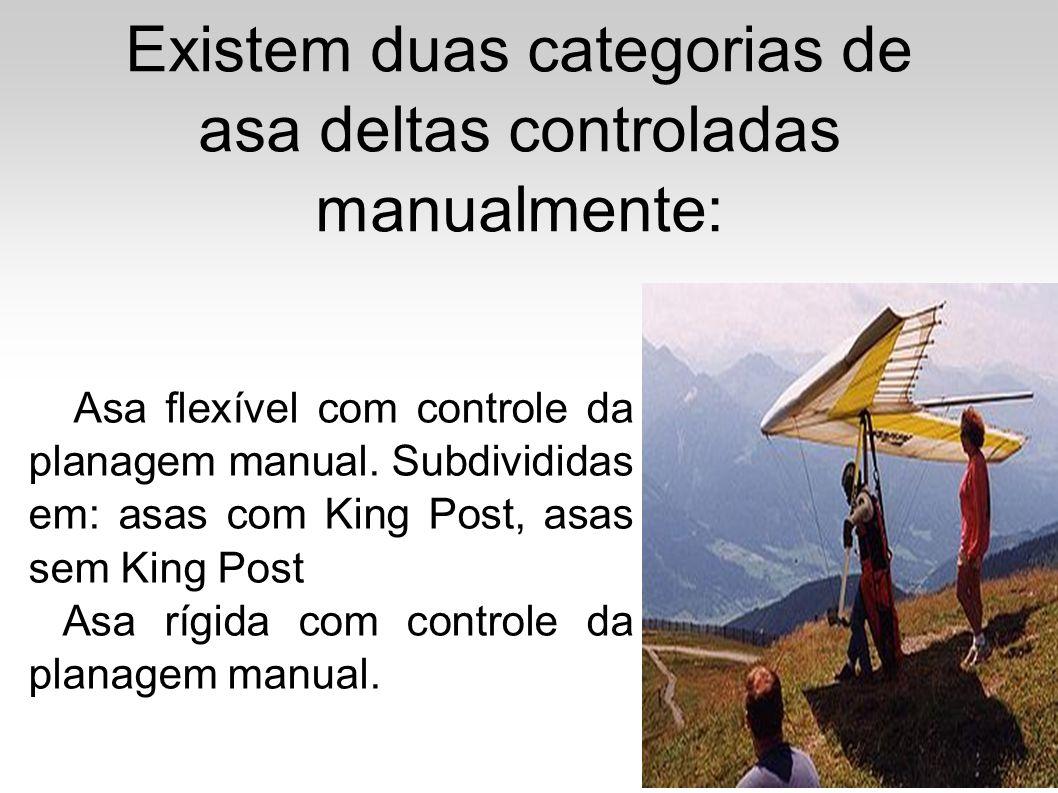 Existem duas categorias de asa deltas controladas manualmente: